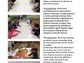 Semaine_du 20_au_27_mai_1