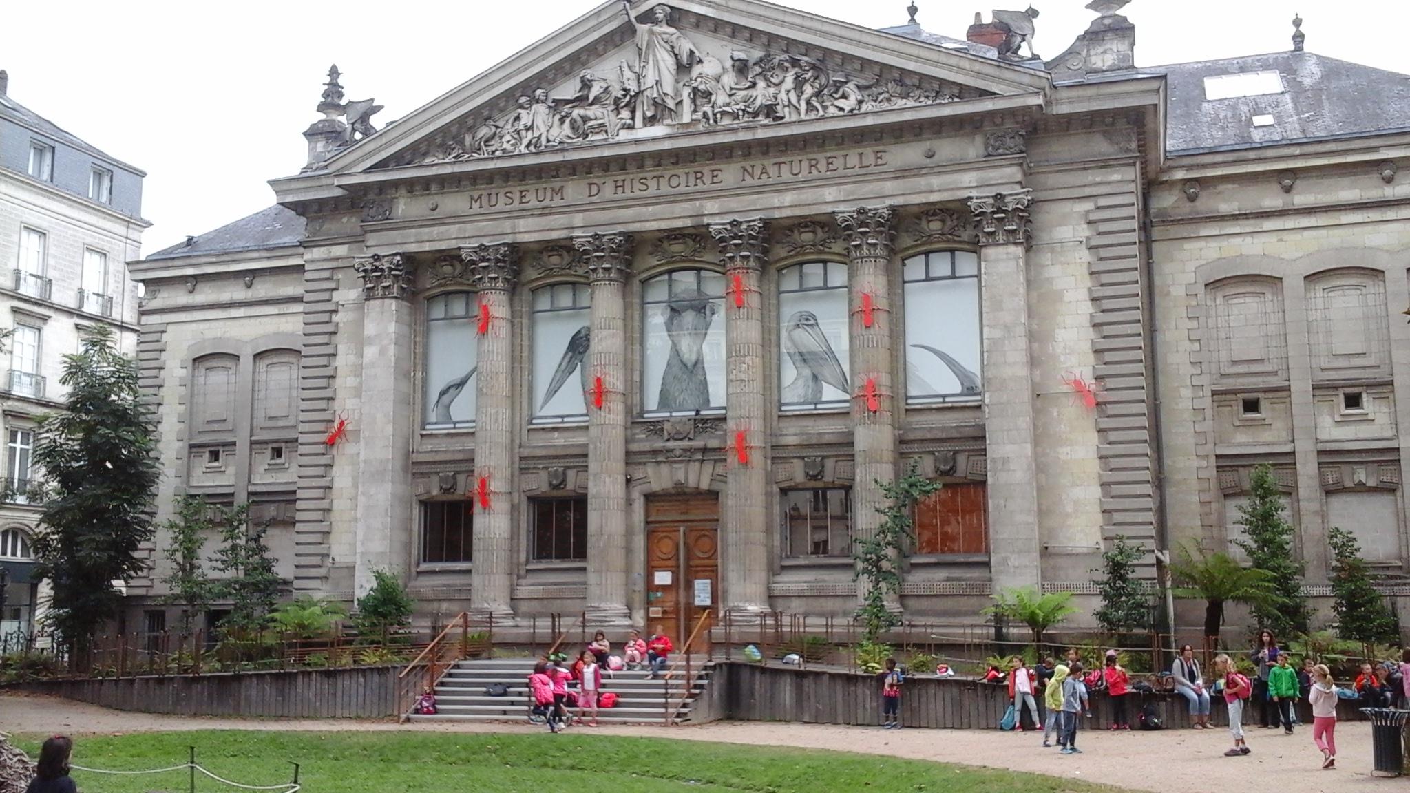 museum-dhistoire-naturelle